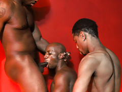 Stallion stripper gives doormen head, while a customer sleeps with him