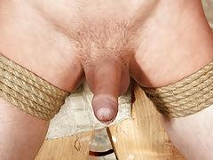 Big-Dicked Fixed Dude sub Reece - Reece Bentley And Sebastian Kane