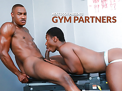 Gym Partners