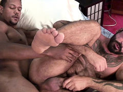 Aron Ridge & Tom Colt