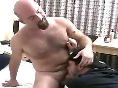 Horny mature stud sucks bear gay