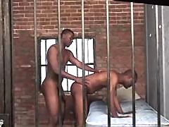 Beefy black gay gets asshole boned